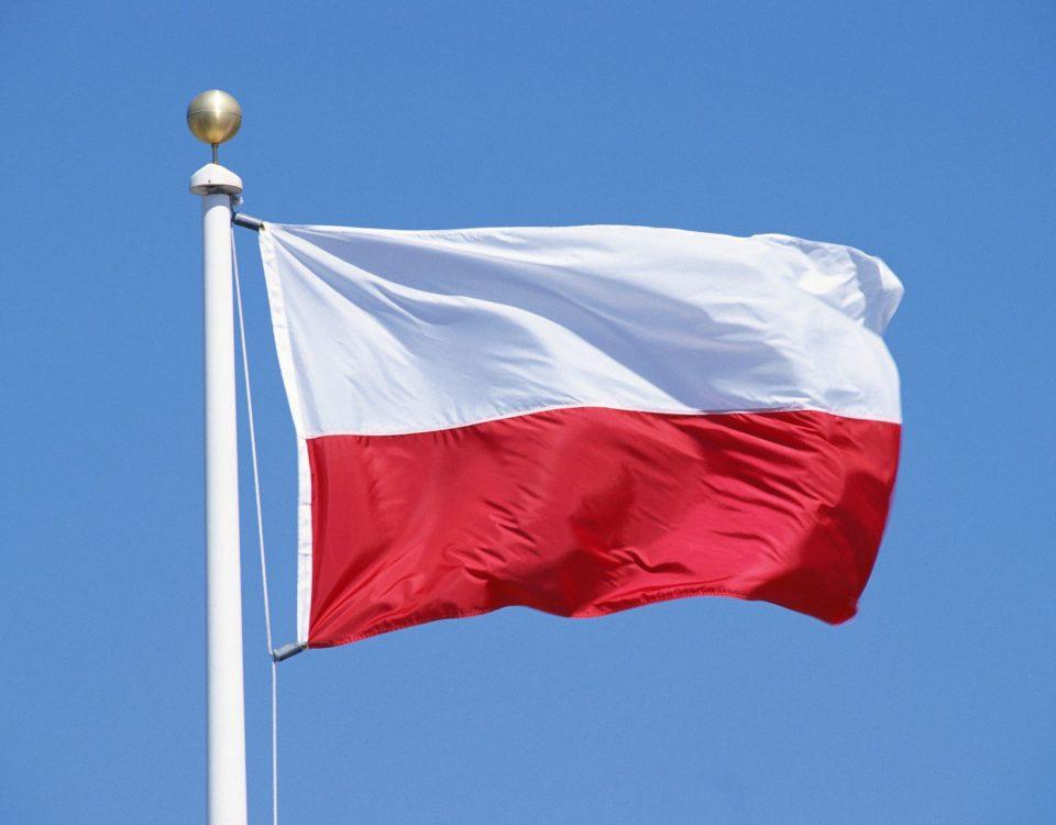 польский переводы